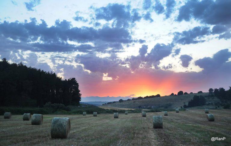 זהר בדשא - חופשה בין כרמל לעמקים